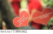Купить «Два бумажных сердца с текстом», видеоролик № 7984662, снято 18 июня 2015 г. (c) Tatiana Kravchenko / Фотобанк Лори