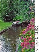 Купить «water plant flower garden flowers», фото № 8112830, снято 12 ноября 2019 г. (c) PantherMedia / Фотобанк Лори