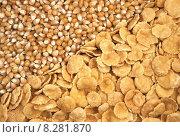Купить «corn seeds and corn-flakes», фото № 8281870, снято 22 февраля 2019 г. (c) PantherMedia / Фотобанк Лори