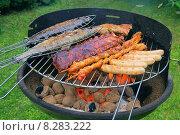 Купить «fish meat barbecue grill sausage», фото № 8283222, снято 15 ноября 2019 г. (c) PantherMedia / Фотобанк Лори