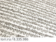 Купить «background backdrop music tune notation», фото № 8335986, снято 21 октября 2019 г. (c) PantherMedia / Фотобанк Лори