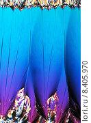 Купить «Binapthyl im polarisierten Licht», фото № 8405970, снято 27 мая 2019 г. (c) PantherMedia / Фотобанк Лори