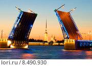 Купить «Разведенный Дворцовый мост и Петропавловский. Санкт-Петербург», фото № 8490930, снято 6 июля 2015 г. (c) Виктор Карасев / Фотобанк Лори