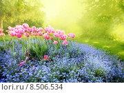 Купить «Sommer Garden», фото № 8506534, снято 24 мая 2018 г. (c) PantherMedia / Фотобанк Лори
