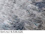 Купить «group switzerland glacier traverse aletschgletscher», фото № 8536626, снято 23 мая 2019 г. (c) PantherMedia / Фотобанк Лори