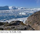 Купить «arctic greenland icebergs climate change», фото № 8538726, снято 25 апреля 2019 г. (c) PantherMedia / Фотобанк Лори