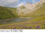 Купить «Lake in the french pyrenees», фото № 8544786, снято 23 февраля 2019 г. (c) PantherMedia / Фотобанк Лори
