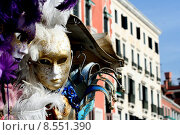 Купить «carnival venice coloured masks traditions», фото № 8551390, снято 22 июля 2019 г. (c) PantherMedia / Фотобанк Лори