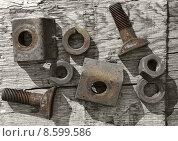 Купить «forgottten nuts and bolts», фото № 8599586, снято 22 июля 2019 г. (c) PantherMedia / Фотобанк Лори