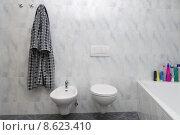 Купить «flow bathroom toilet bidet washroom», фото № 8623410, снято 21 марта 2019 г. (c) PantherMedia / Фотобанк Лори