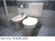 Купить «bathroom toilet bidet purify personal», фото № 8638202, снято 21 марта 2019 г. (c) PantherMedia / Фотобанк Лори