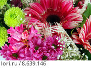 Купить «Bautiful flowers», фото № 8639146, снято 15 декабря 2018 г. (c) PantherMedia / Фотобанк Лори