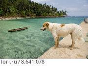 Купить «Equator Beach», фото № 8641078, снято 20 августа 2018 г. (c) PantherMedia / Фотобанк Лори