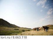 Купить «Cowboy Scene», фото № 8663118, снято 27 июня 2019 г. (c) PantherMedia / Фотобанк Лори
