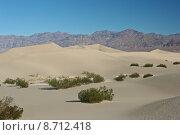 Купить «Stovepipe Wells Sand Dunes», фото № 8712418, снято 27 июня 2019 г. (c) PantherMedia / Фотобанк Лори