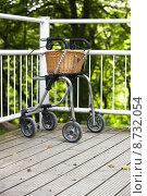 Купить «tree park outside basket gehhilfe», фото № 8732054, снято 21 января 2019 г. (c) PantherMedia / Фотобанк Лори