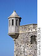 Купить «wall puerto masonry oriel teneriffa», фото № 8929354, снято 23 мая 2019 г. (c) PantherMedia / Фотобанк Лори