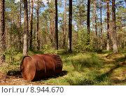 Купить «barrel illegal disposal mull refuse», фото № 8944670, снято 21 марта 2019 г. (c) PantherMedia / Фотобанк Лори