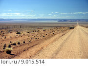 Купить «Namibian dirt road heading into the distance», фото № 9015514, снято 16 октября 2018 г. (c) PantherMedia / Фотобанк Лори