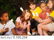 Купить «Дети на пикнике у костра», фото № 9100294, снято 31 мая 2015 г. (c) Сергей Новиков / Фотобанк Лори