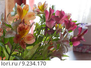 Натюрморт с цветами. Стоковое фото, фотограф Юрий Артюх / Фотобанк Лори