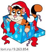 Купить «Cute Christmas cat», иллюстрация № 9263854 (c) PantherMedia / Фотобанк Лори