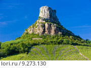 Купить «La Roche de Solutré with vineyards, Burgundy, France», фото № 9273130, снято 19 сентября 2019 г. (c) PantherMedia / Фотобанк Лори