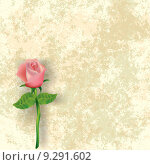 Купить «abstract floral illustration with rose on dirty background», иллюстрация № 9291602 (c) PantherMedia / Фотобанк Лори