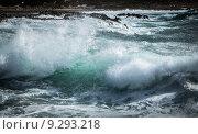Купить «Шторм», фото № 9293218, снято 21 ноября 2018 г. (c) Минаев Сергей / Фотобанк Лори