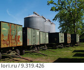 Large Grain Silos behind Peanut Wagons and a Pecan. Стоковое фото, фотограф Linda Johnsonbaugh / PantherMedia / Фотобанк Лори