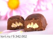 Купить «Pecan Nut Truffle», фото № 9342002, снято 11 июля 2020 г. (c) PantherMedia / Фотобанк Лори