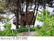 Купить «Treehouse accommodation landscape nature tree leaf bush», фото № 9351650, снято 18 июня 2019 г. (c) PantherMedia / Фотобанк Лори