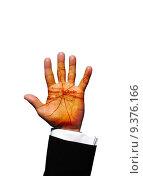 Купить «Berlin hand», фото № 9376166, снято 22 июля 2019 г. (c) PantherMedia / Фотобанк Лори