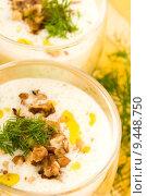 Купить «Tarator - traditional bulgarian cold summer soup», фото № 9448750, снято 24 апреля 2018 г. (c) PantherMedia / Фотобанк Лори
