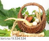 Купить «root carrots horseradish mair bchen», фото № 9534534, снято 20 августа 2018 г. (c) PantherMedia / Фотобанк Лори