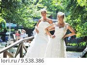 Купить «beautiful bride outdoor», фото № 9538386, снято 16 июня 2019 г. (c) PantherMedia / Фотобанк Лори