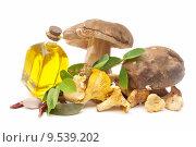 Купить «mushrooms and oil», фото № 9539202, снято 19 марта 2019 г. (c) PantherMedia / Фотобанк Лори