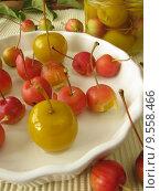Купить «apple apples embellishment preserves apfelkompott», фото № 9558466, снято 22 января 2019 г. (c) PantherMedia / Фотобанк Лори
