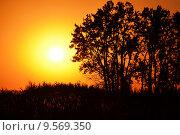 Закат. Стоковое фото, фотограф Токарева Татьяна / Фотобанк Лори