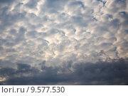 Купить «Перистые облака в вечернем небе», эксклюзивное фото № 9577530, снято 13 августа 2015 г. (c) Сергей Лаврентьев / Фотобанк Лори