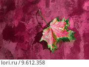 Купить «background backdrop lying autumn fall», фото № 9612358, снято 15 февраля 2019 г. (c) PantherMedia / Фотобанк Лори