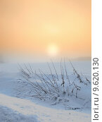 Купить «warm sunset on a cold winterday », фото № 9620130, снято 17 июля 2018 г. (c) PantherMedia / Фотобанк Лори
