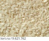 Купить «Rice picture», фото № 9621762, снято 23 июля 2019 г. (c) PantherMedia / Фотобанк Лори