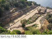 Купить «delphi oracle Greece», фото № 9630866, снято 18 октября 2018 г. (c) PantherMedia / Фотобанк Лори