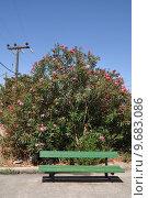 Купить «bright greek scene with green bench and pink tree in Zia village (Kos island)», фото № 9683086, снято 22 августа 2019 г. (c) PantherMedia / Фотобанк Лори