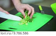 Купить «Женщина режет листья салата», видеоролик № 9786586, снято 21 июня 2015 г. (c) Кекяляйнен Андрей / Фотобанк Лори