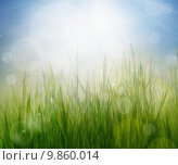 Купить «Spring or summer abstract season nature background », фото № 9860014, снято 18 января 2019 г. (c) PantherMedia / Фотобанк Лори