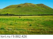 Летний пейзаж Хакасии. Стоковое фото, фотограф Светлана Швенк / Фотобанк Лори