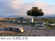 Купить «Руины античного города Пергам. Турция», фото № 9883310, снято 17 августа 2018 г. (c) Уфимцева Екатерина / Фотобанк Лори