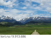 Купить «green mountain snow meadow track», фото № 9913686, снято 18 июня 2019 г. (c) PantherMedia / Фотобанк Лори